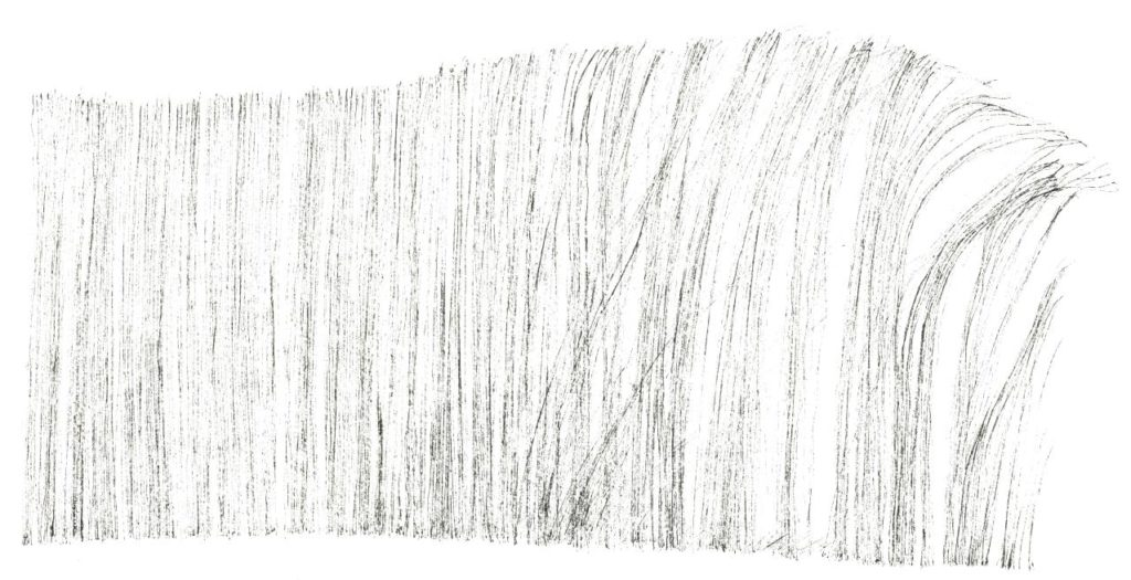 L'attribut alt de cette image est vide, son nom de fichier est VENT-DANS-LES-HERBES-RRR-1-1024x525.jpg.